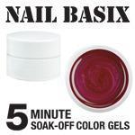 Nail Basix 5-Minute Soak-Off Color Gels